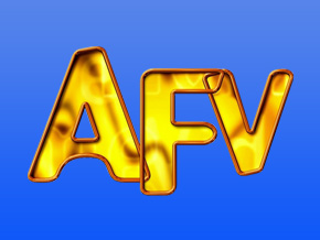 America's Funniest Home V