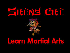 Sheng Chi - Learn Martial Arts