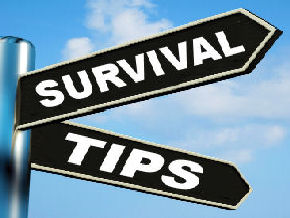 Tips For Surviving