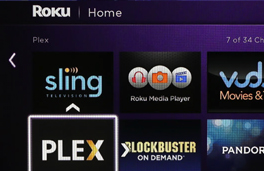 cNet Roku Review